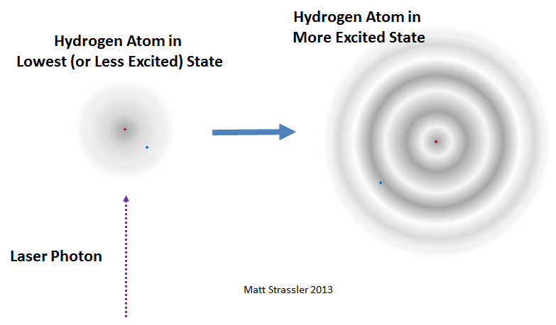 The Puzzle Of The Proton And The Muon Of Particular